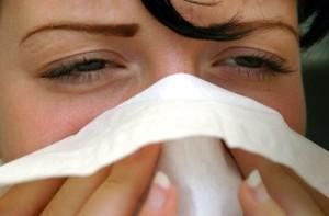 Google Flu Trends soll vor Grippewellen warnen